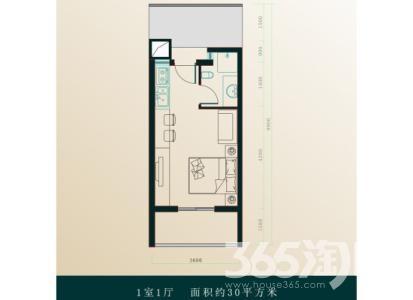 岭地金居1室1厅1卫40平米整租精装