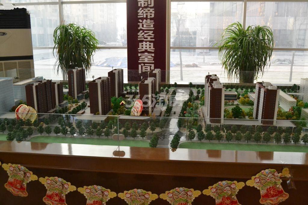 龙城2011实景图