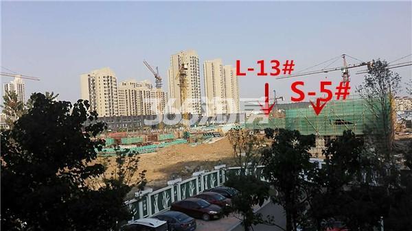 枫林天下康城L-13#、S-5#楼在建实景图(11.14)