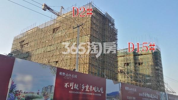 恒泰山水文园工地D1\D15#楼工程进度实景图(12.25)