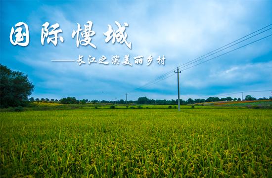 光影石城362:长江之滨最美丽乡村