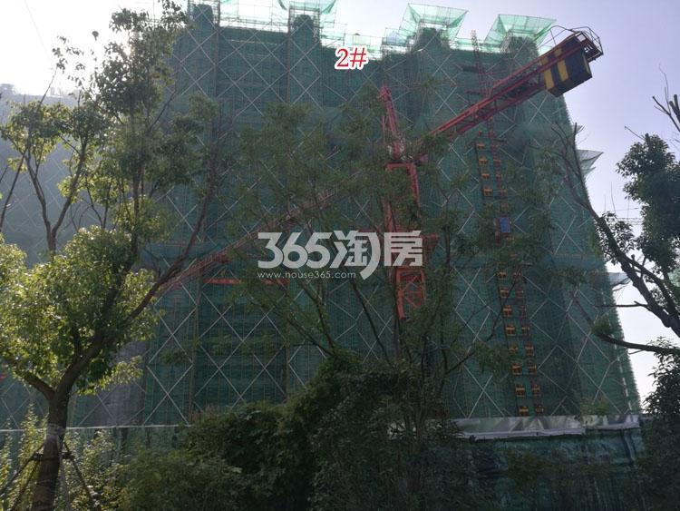 金象朗诗红树林施工进展(12.26)