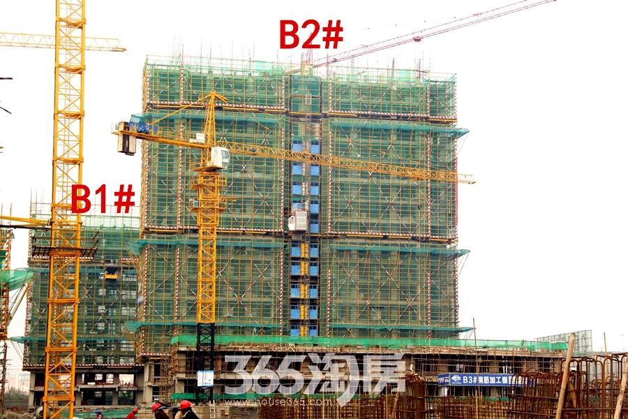 汀海壹品B1#、B2#楼12月工程进度(2018.12摄)