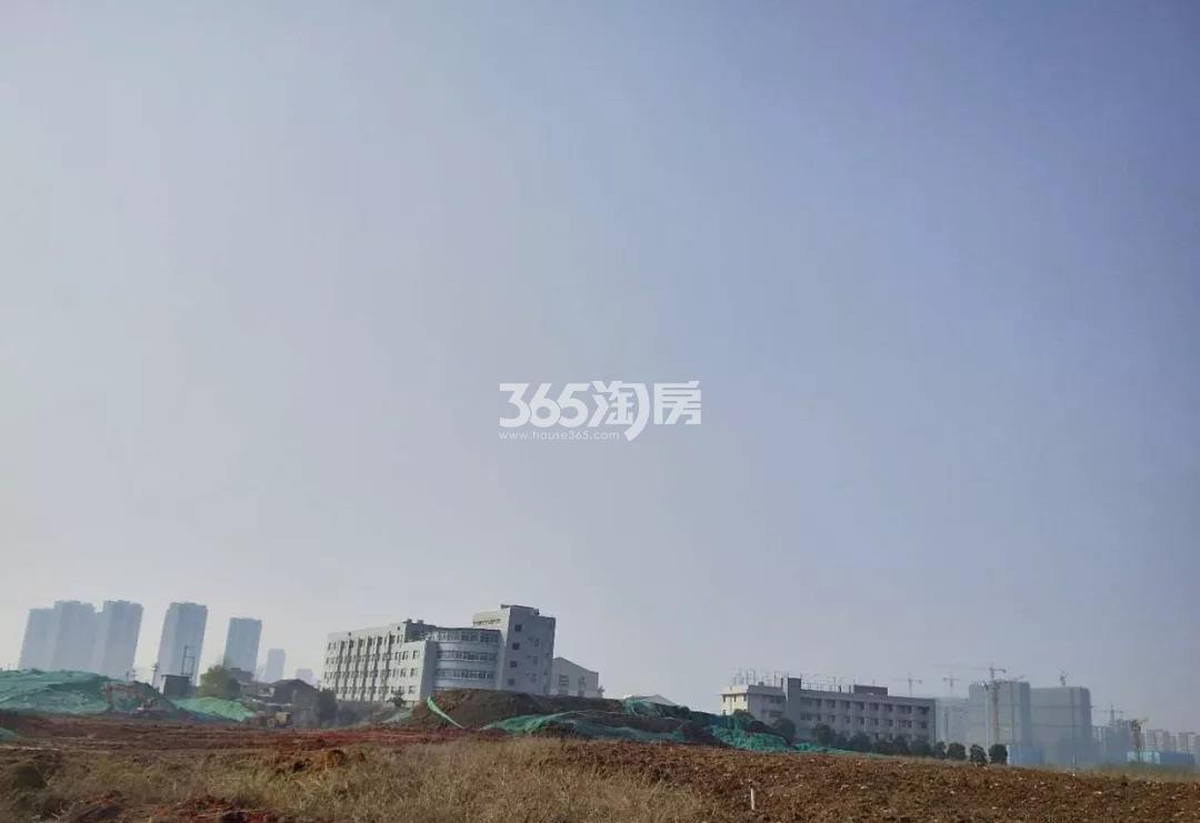 金茂青龙山新城G52地块实景图