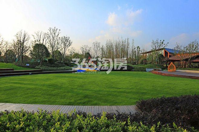 禹洲绿城蘭园实景图