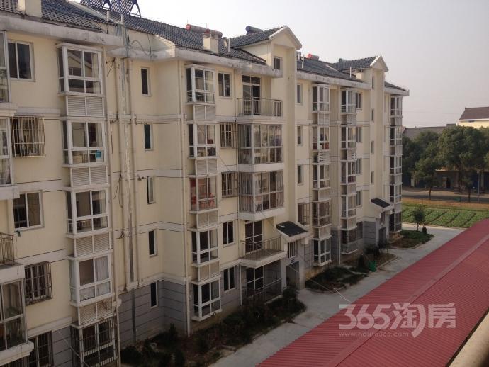 红梅新村小区3室2厅1卫121.00平方2012年产权房毛坯
