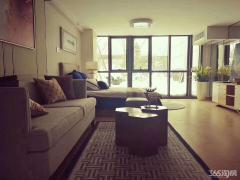 省政府包河大道旁 市政冷暖双供 4A级景区 精装公寓