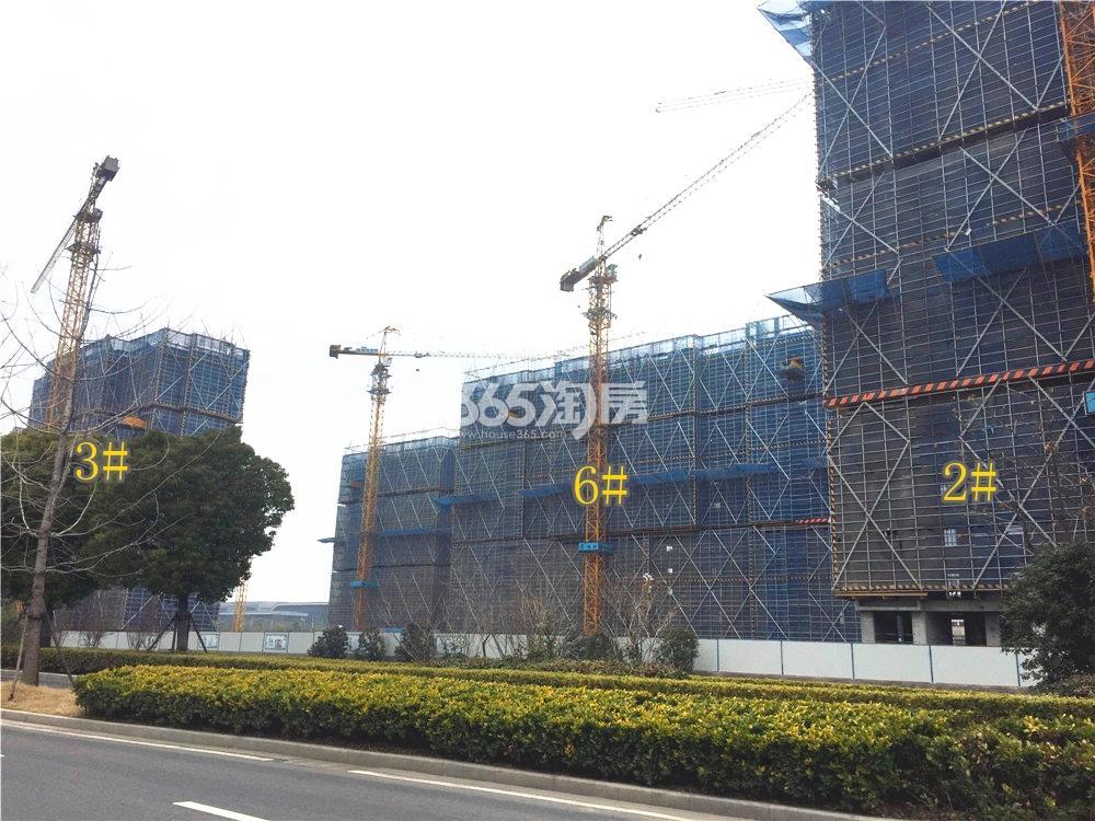 绿地华侨城海珀滨江在建实景图(2.24)