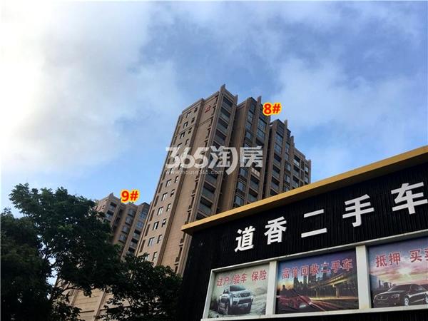 栖霞栖庭8#、9#楼现房小高层实景图(2017.12摄)