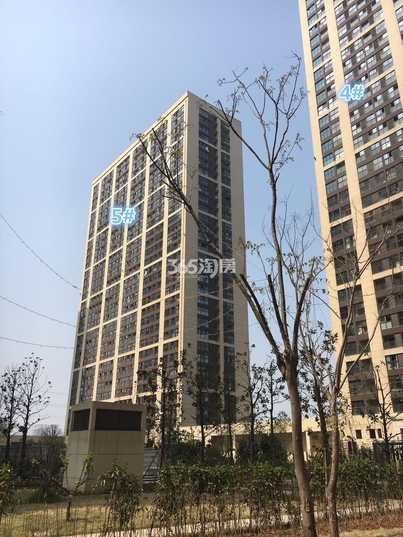 东方万汇城南区5、4#实景图(5.23)