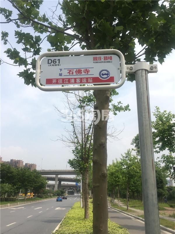 观山悦周边公交(5.25)