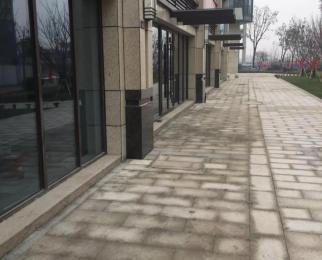 高新区艾菲国际服务中心 多套商铺出租大小面积都有