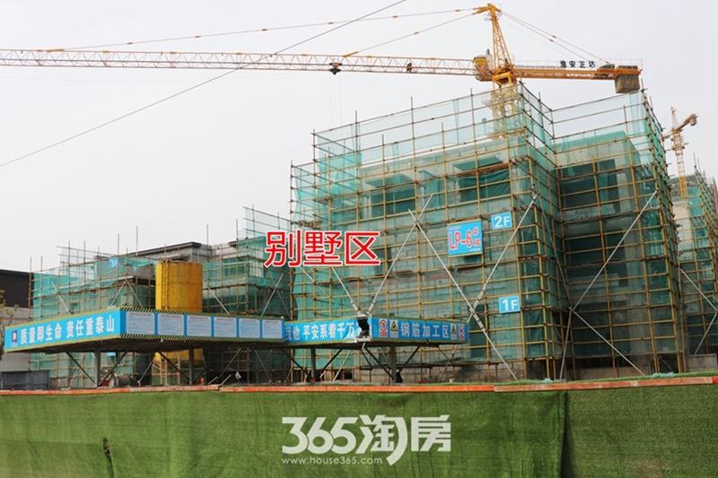 伟星芜湖院子别墅区工程进度(2019.3)