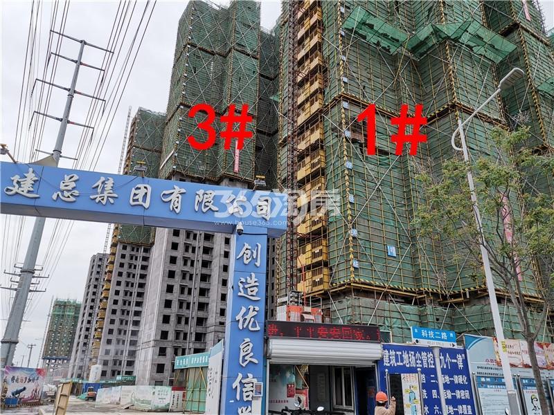 珍宝岛熙悦府在建1、3#楼实景图(5.30)