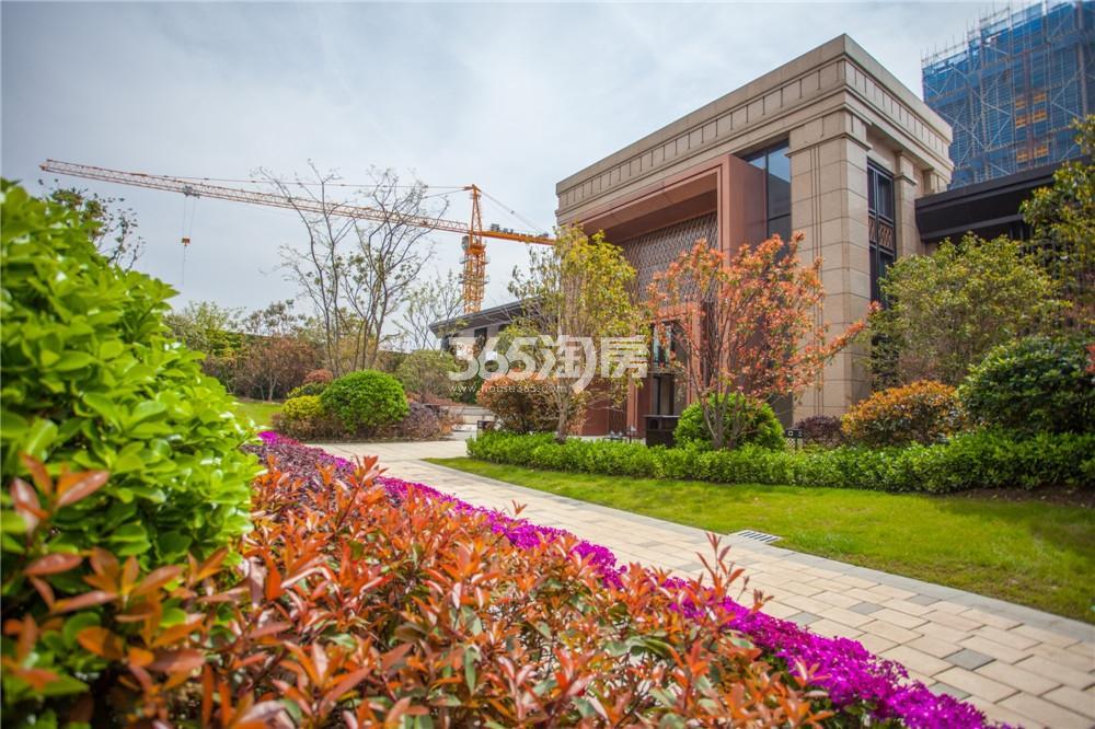 绿地华侨城海珀滨江在建实景图(4.12)
