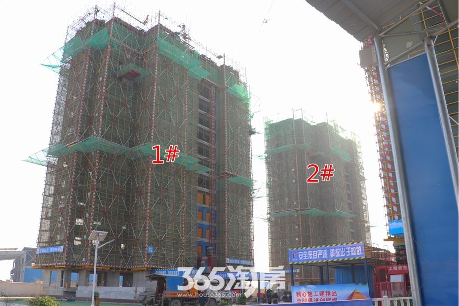 皖新春江明月1#2#工程进度(2018.10月摄)