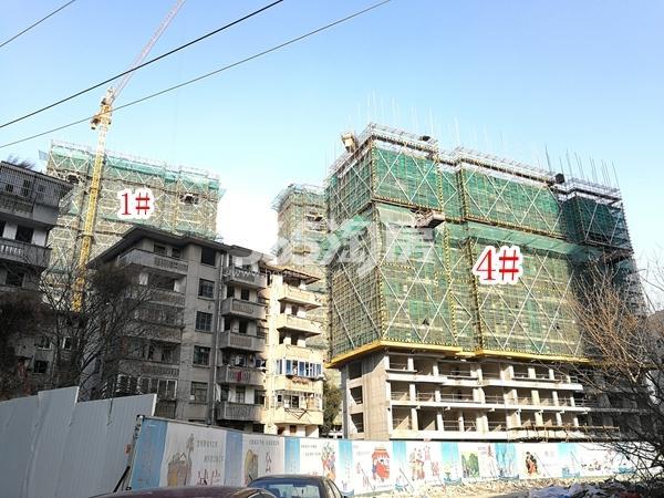绿地西水东中央生活区W公馆1#、4#楼实景图(2018.3 摄)
