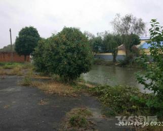 湖熟民族工业园500平米整租