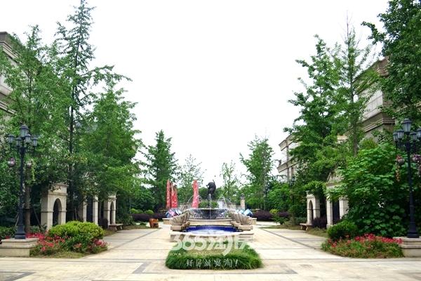 柏庄香府环境实景图(2018.5摄)