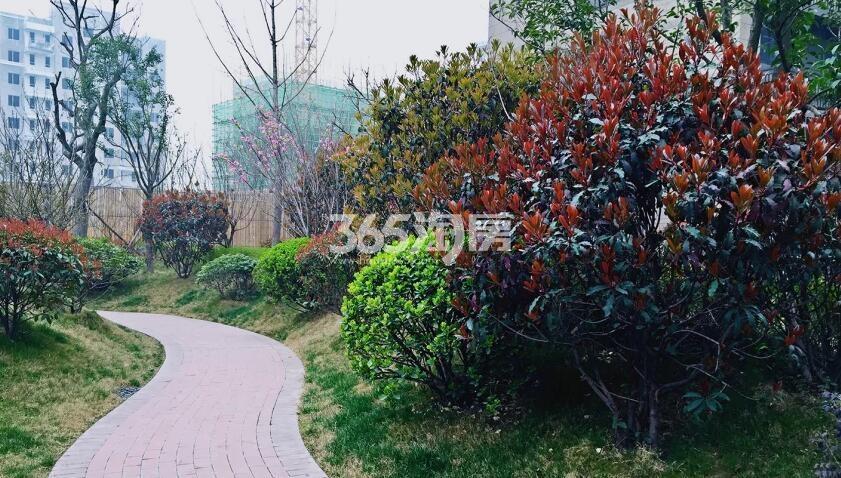 中建昆明澜庭实景园林(拍摄于2018.1.02)