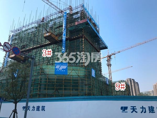 富力运河十号小高层实景图(2017.11 摄)