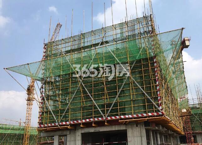 绿都地产少荃府Y-2#工程进度实景图(2018.4.16)