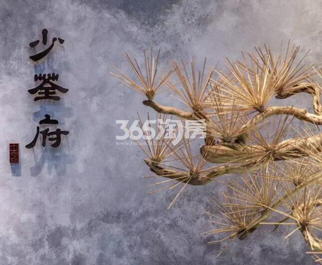 绿都地产少荃府售楼部一角(2018.4.16)
