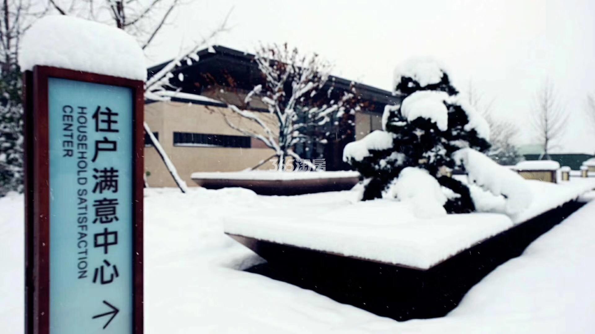 美好紫蓬山壹号雪景实景图(2018.1.4)
