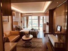 约16万方艺墅洋房住区·叠墅/洋房/高层合理布局·满足全阶层需求