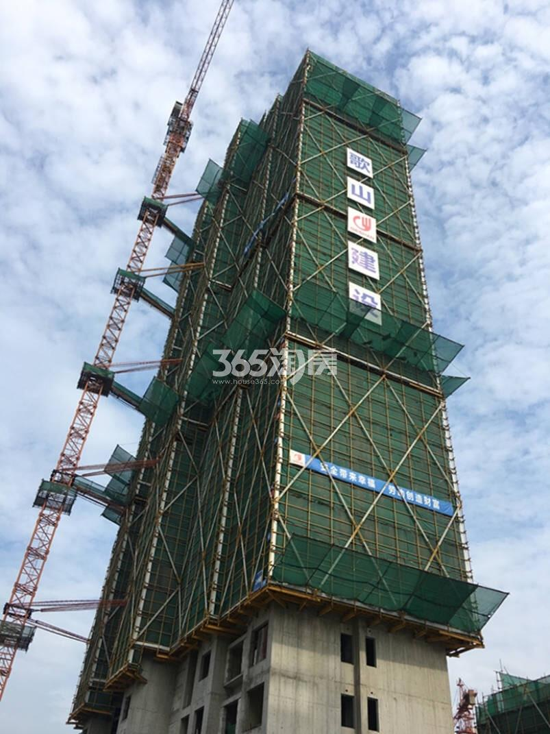 2017年10月金地大运河府1号楼侧拍实景图