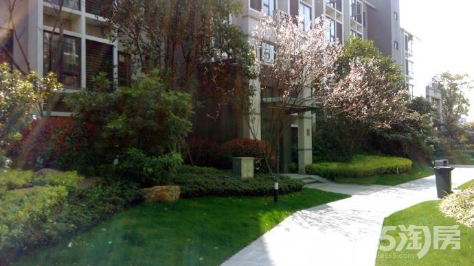 紫金上林苑4室2厅2卫144㎡整租简装