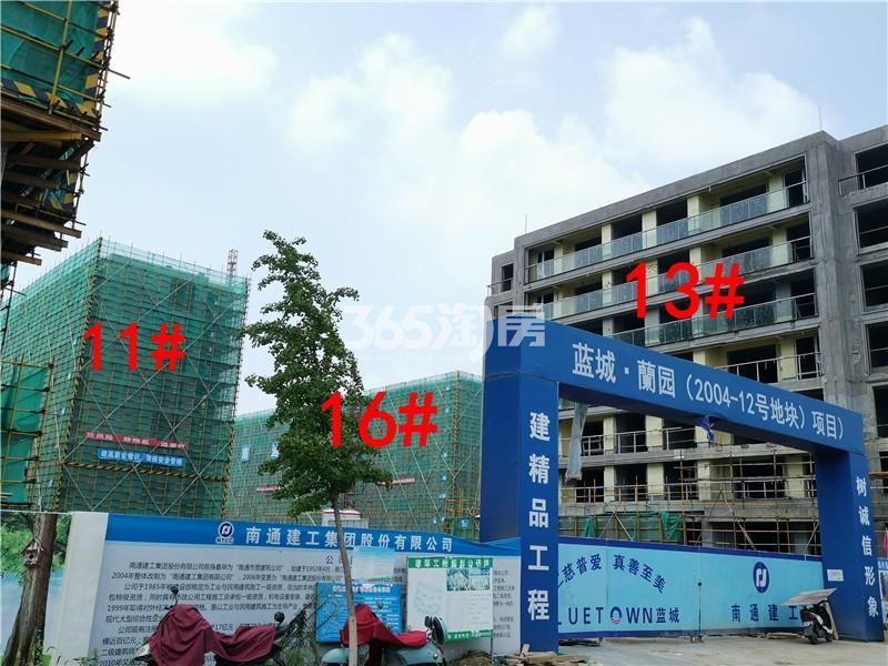 蓝城蘭园在建11、13、16#楼实景图(7.26)