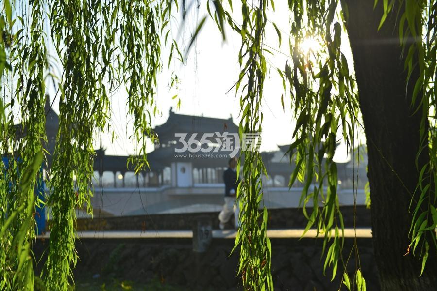 苕溪壹号景观实景图