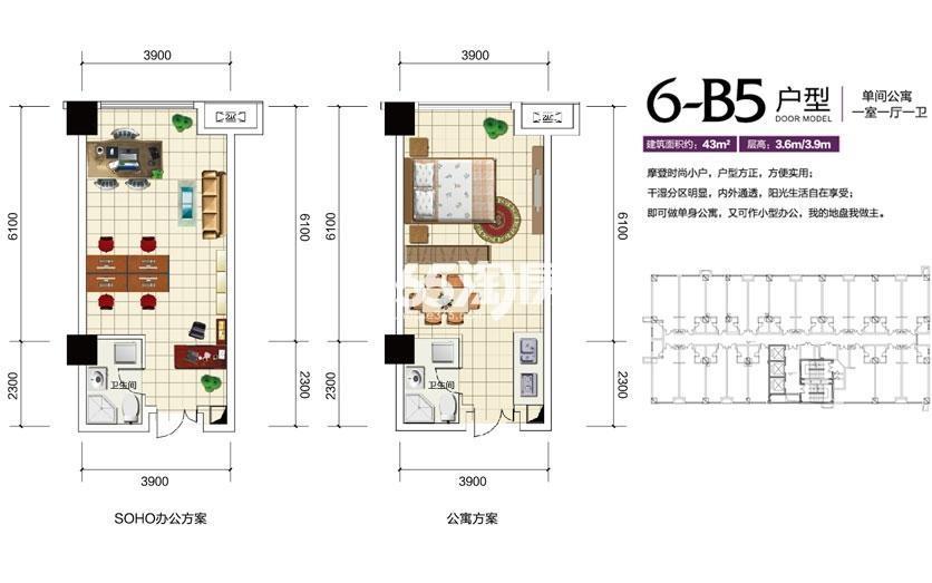 6-B5户型|单间公寓或一室一厅一卫