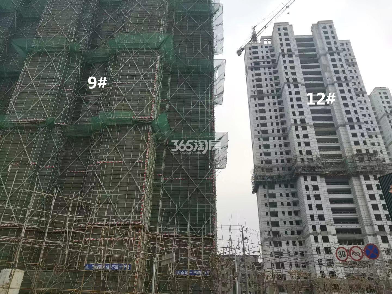 江山大境B地块9、12号楼实景图(12.30)