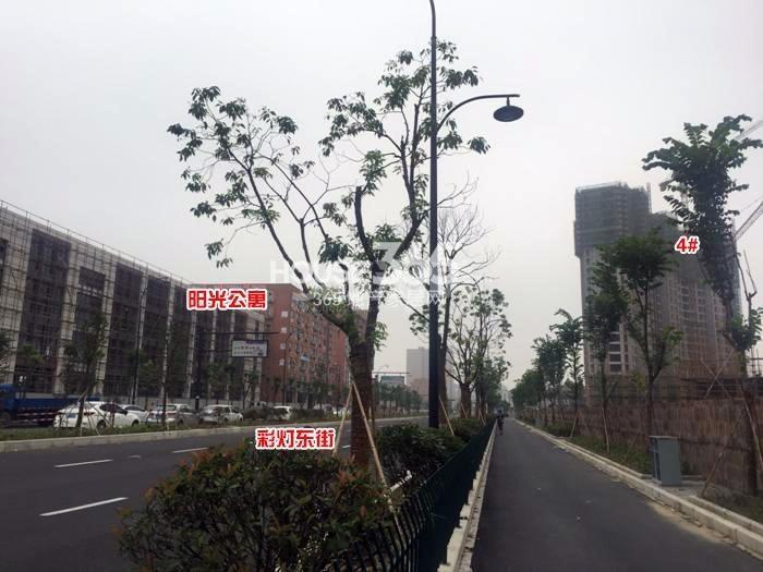 2015年6月阳光郡项目实景--4号楼及周边