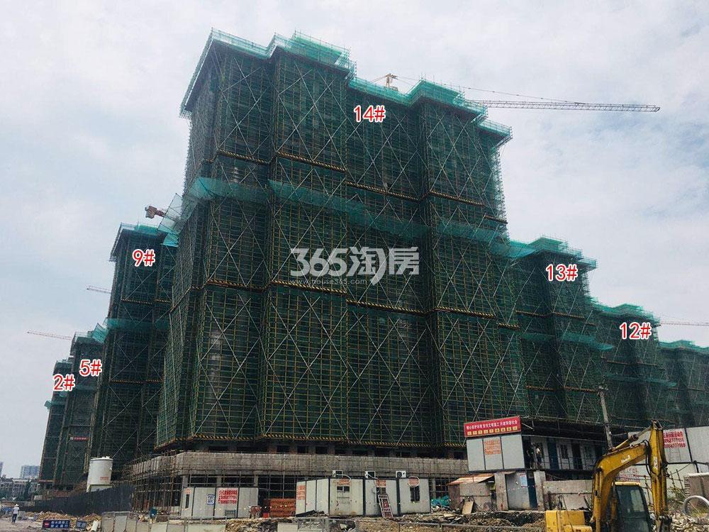 苕溪壹号2、5、9、12-14#工程进展(2018.7)