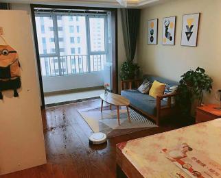 中国铁建青秀城1室1厅1卫47平米整租精装