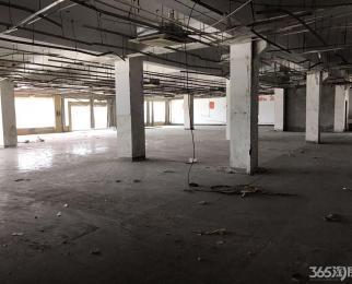 江南 独栋商业房 停车位30个 价格不含税 随时看房 户型方