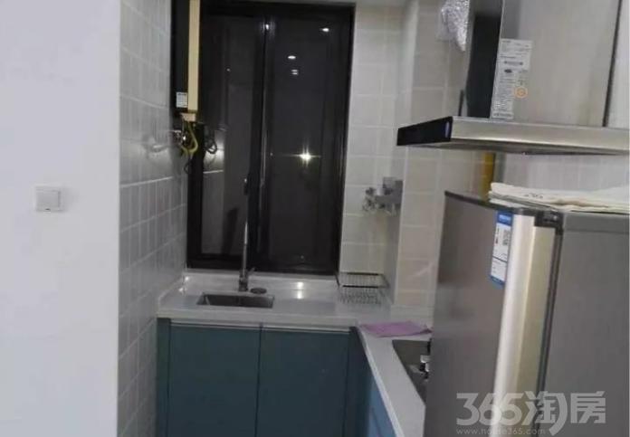 缔艺家园1室1厅1卫60㎡整租豪华装