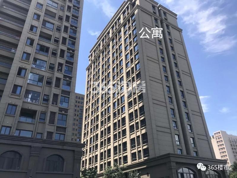 中电颐和府邸项目在售公寓(7.25)