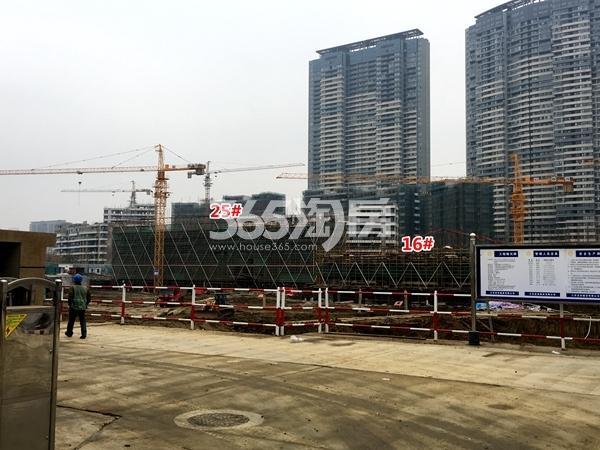 朗诗新B2地块16#、25#楼洋房工程实景(2017.11摄)
