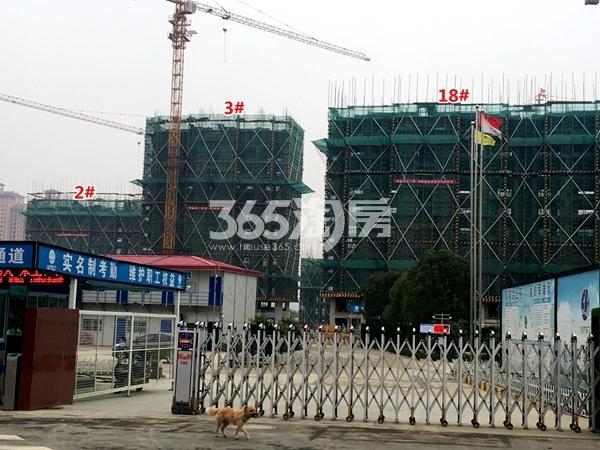 中锐星公元18#楼高层,2#、3#楼小高层工程实景(2017.11摄)