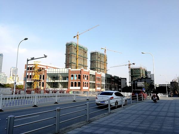 绿地西水东中央生活区W公馆最新进展