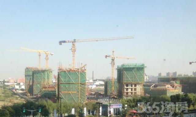 上海25公里,首付50万精装三房,万科巨作