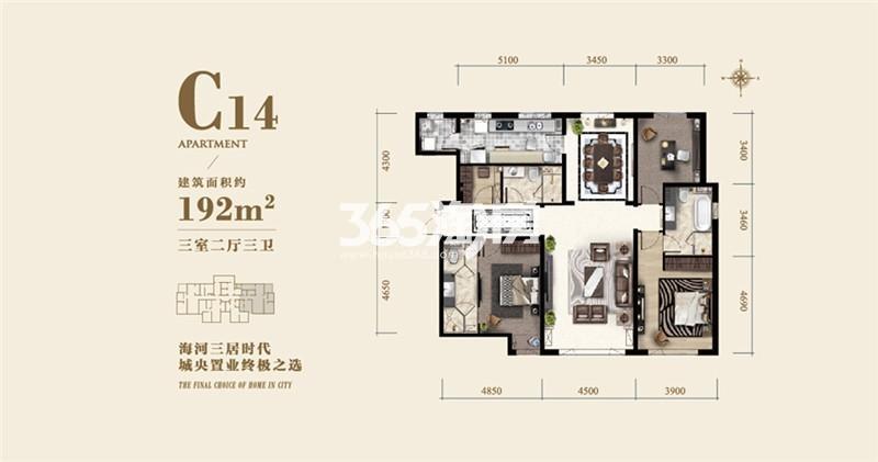 C14户型 192平米三室两厅两卫