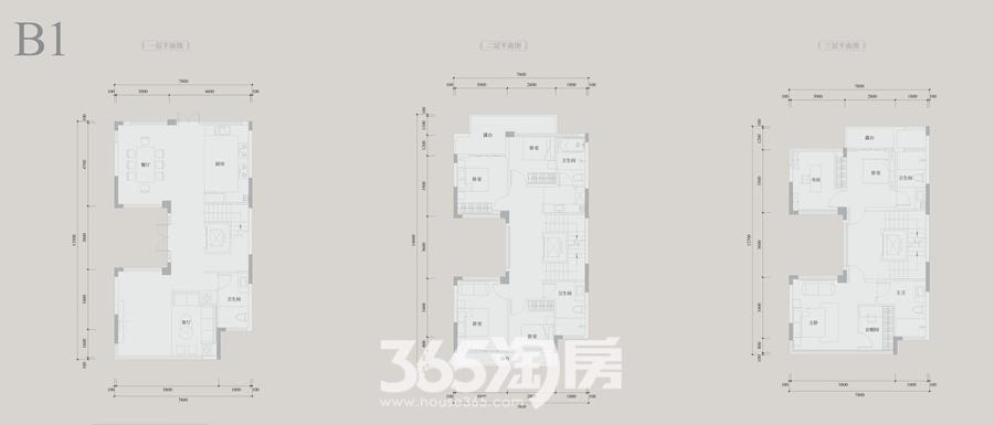 安展蔚然家园B1约277平别墅户型图