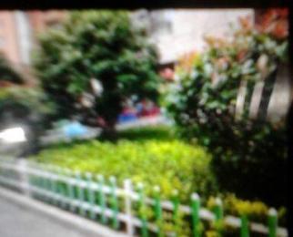 北城世纪城禄徽苑2室2厅1卫80.57平米整租中装