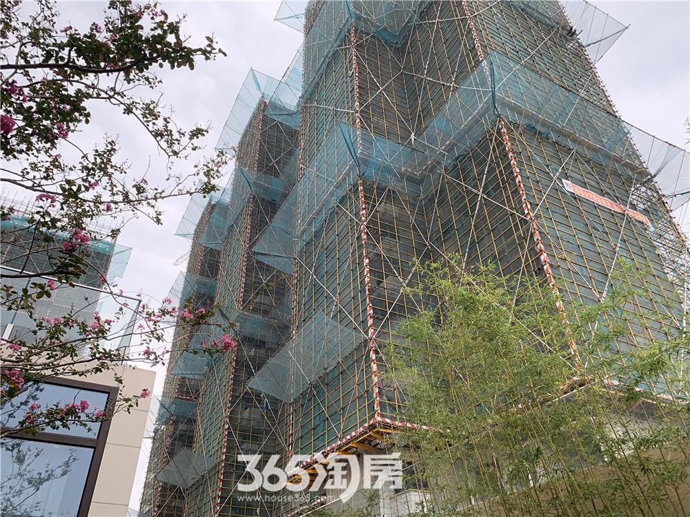 伟星印长江工程进度(2019.11摄)